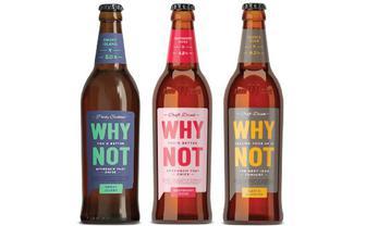 Пиво спеціальне пастеризоване, WHY NOT,  0,5 л