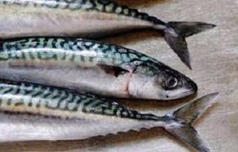 Мойва х.к 200г Master Fish